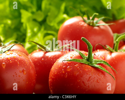 Fresh vine-ripened tomatoes - Stock Image