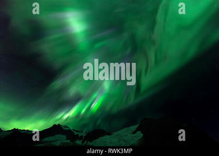 Northern Lights over Juneau Icefield, Tongass National Forest; Alaska, United States of America - Stock Image