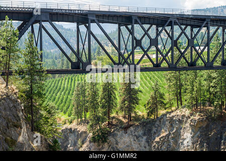 Trout Creek Bridge (1913), railway trestle over Trout Creek Canyon on the historic Kettle Valley Steam Railway. - Stock Image
