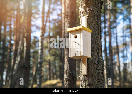 wooden bird house on the pine tree trunk - Stock Image