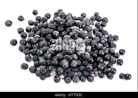 Organic frozen aronia berries on white background - Stock Image