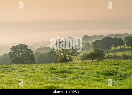 Peak District National Park - Stock Image