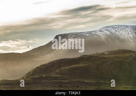 Mountains and scenery during sunrise in the Norwegian Fjords - Stock Image