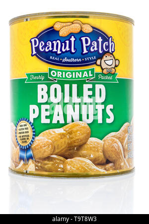 Winneconne, WI - 11 May 2019 : A can of Peanut Patch boiled peanuts on an isolated background - Stock Image