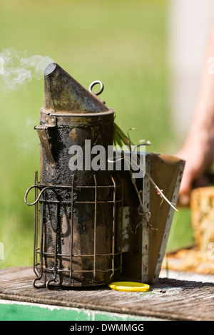 Bee Smoker On Crate - Stock Image