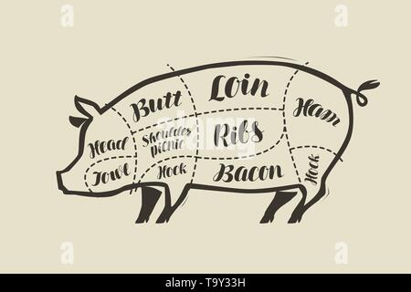 Pig meat cutting. Menu for restaurant or butcher shop. Vector vintage - Stock Image