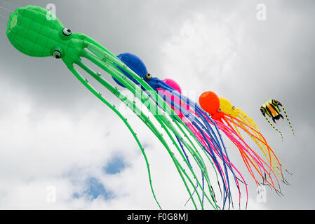 Portsmouth, UK. 15th August 2015. A line of large octopus soft kites fly in the breeze during the International - Stock Image