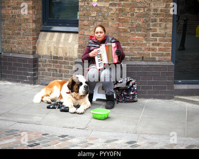 Lady playing a piano accordion with a St Bernard dog for company near the Golden Hinde St Mary Overie Dock, Cathedral St, London, UK - Stock Image