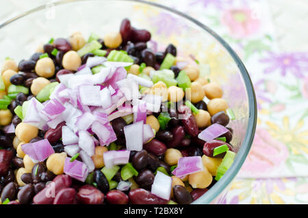 Mixed bean salad with chickpeas, kidney beans; black beans, celery, and red onion. - Stock Image