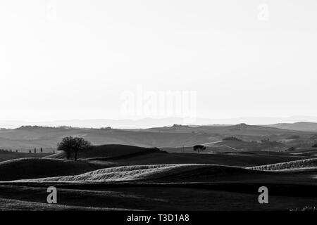 Beautiful view of Tuscany hills at sunset with mist - Stock Image