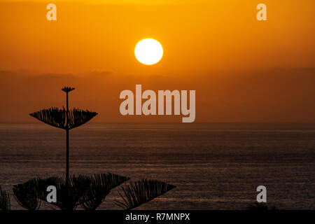 Sunset over the Atlantic Ocean from La Palma Island, Canary Islands, Spain - Stock Image