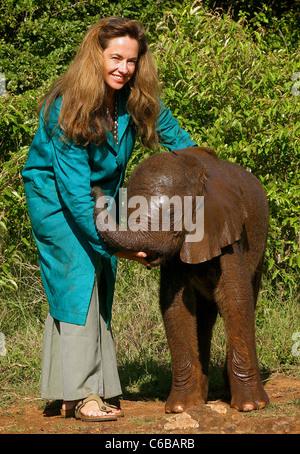 ORPHANED ELEPHANT WITH ANGELA SHELDRICK DAUGHTER OF DAME DAPHNE SHELDRICK - Stock Image