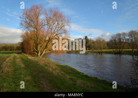 The River Wye in sun near The Warren, Hay on Wye - Stock Image