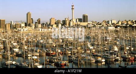 new zealand Auckland yacht harbour skyline - Stock Image