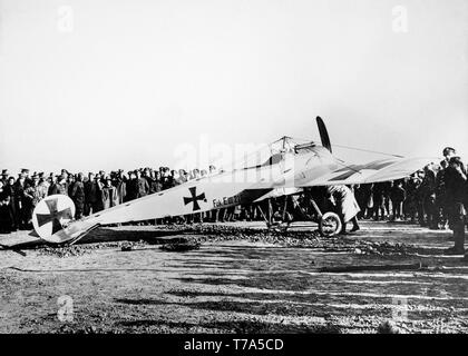 A German Air Force Fokker E.III aircraft of World War One. Original Black and White photograph taken in 1916. - Stock Image