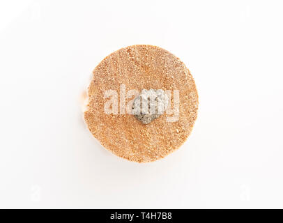 Wooden mason bee tube filled with mud - Stock Image