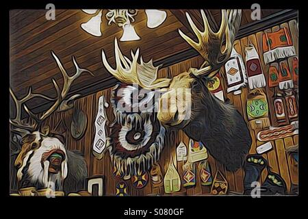 Mounted moose head in a Rocky Mountain Indian trading post - Stock Image