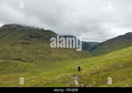 A lone female walker trudges up from Glen Nevis on the slopes near Sgurr a bhuic - Stock Image