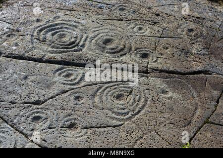 Cup and ring mark marks prehistoric Neolithic rock art on natural rock outcrop at Cairnbaan in Kilmartin Valley, - Stock Image