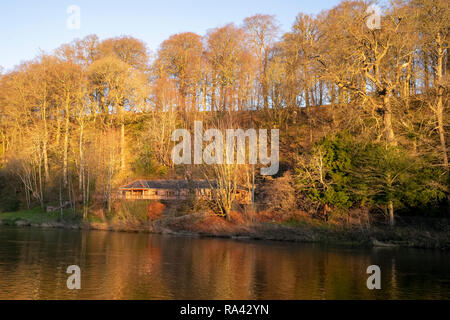 Corby Woods upstream of the Wetheral railway viaduct, Cumbria, UK - Stock Image
