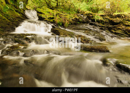 The river Ceunant Ty'n y Ddol in the Lledr Valley near Roman Bridge in the heart of the Snowdonia National Park in North Wales - Stock Image