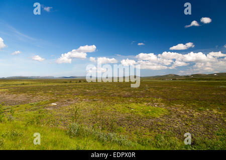 Picture of the finnmarksvidda in northern norway - Stock Image