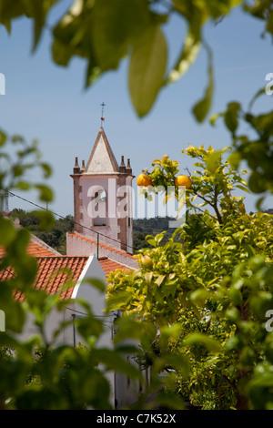 Portugal, Algarve, Pademe, Church through Orange Trees - Stock Image