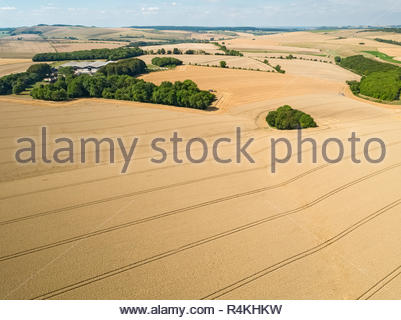 Aerial landscape of summer farm wheat and barley field harvest crops - Stock Image