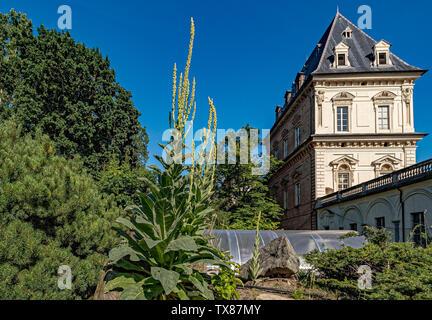Italy Piedmont Turin Valentino botanical garden - View with Valentino castle - Stock Image