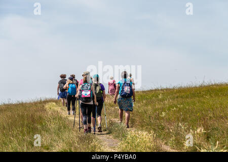 Lulworth, Dorset, UK. 23rd June 2018. Group of walkers on a walk for cancer charity walk at Durdle Door on the Dorset coast, near Lulworth Cove on a hot sunny day in June. Thomas Faull/Alamy Live News - Stock Image