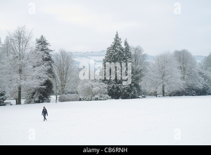 A walker in Royal Victoria Park in the snow Bath Somerset England UK - Stock Image