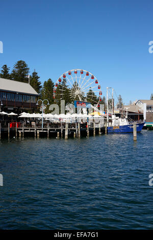 View across Fisherman's Harbour to Cicerello's restaurant and the Fremantle wheel. Perth, Western Australia. - Stock Image