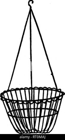 . Florists' review [microform]. Floriculture. No. 1 Size Per 100 10-inch $14.00 12-inch 16.2S 14-inch 23.00 16-inch 26.00 Ask for our Latest Price List showing Wirework Discounts and New Low Prices on Supplies.. No. 2 Size Per 100 10-inch $16.28 12-inch 20.00 14-jnch 2600 16-inch 81.00 B. E. and J. T. COKELY Everything in Ploristo' Supplies. 20I North Seventh Avenue, Established 22 Years SCRANTON, PA. SIXTH CirY WIRE WORKS Manufacturers of WIRE FLORAL DESIGNS and All Wire Novcltica to Order. 224 High Ave. CLEVELAND, OHIO WIRED TOOTHPICKS Manufactured by W. J. COWEE. 'S^r 10,000, $2.25 50,000,  - Stock Image