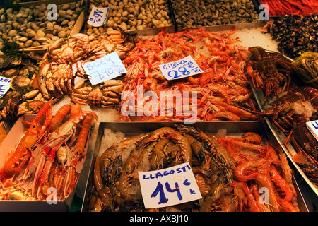 Spain Barcelona Market hall Mercat de la Boqueria fresh fish seefood prawns - Stock Image