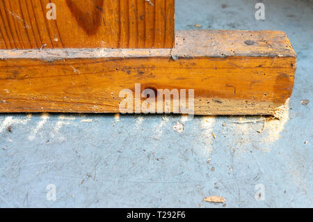 Woodworm holes in furniture with wood dust on floor - Stock Image