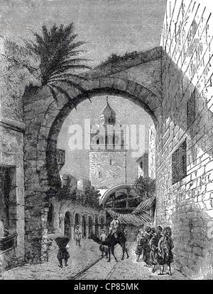 Cityscape of Tunis, Tunisia, North Africa, historical engraving, 19th Century, Stadtansicht von Tunis, Tunesien, - Stock Image