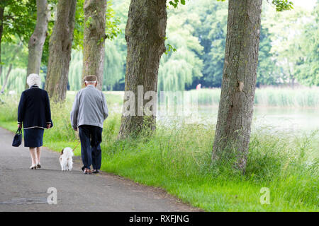 Two retired persons walking with dog - Stock Image