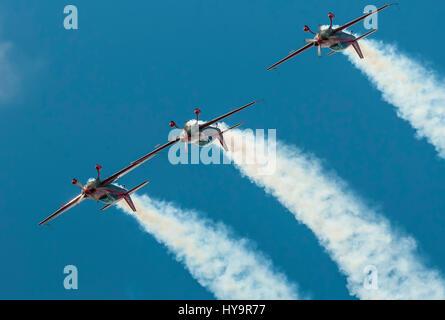Royal Jordanian Falcons. The Royal Jordanian Falcons is a perennial national aerobatic team - Stock Image
