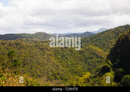 Tree covered hillsides in St Lucia, The Caribbean - Stock Image