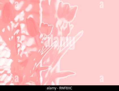 Spring tulips abstract background soft focus double exposure illustration in Pantone colour of the year 2019 living coral a hot trendy color - Stock Image