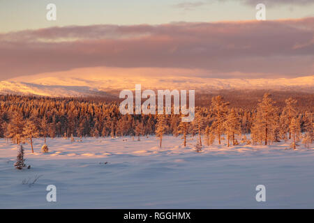 Winter landscape with mountain in background and clouds hanging over the mountain, Gällivare, Swedish Lapland, Sweden - Stock Image