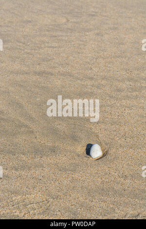 Small stone sitting alone on a wet beach sand bed. Metaphor: 'Last Man Standing', odd man out, odd one out, rock all alone, single stone. - Stock Image