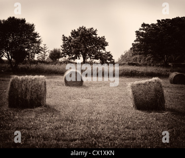 Round hay bales in rural Vermont field - Stock Image