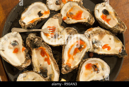 A closeup of a plate of Louisianna Gulf oyster shells. - Stock Image