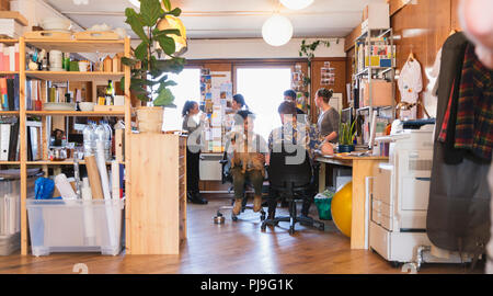 Creative business people with dog talking in office - Stock Image