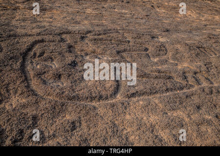 The famous Usgalimal rock carvings in Goa, India. Dated before 8000 BC - Stock Image
