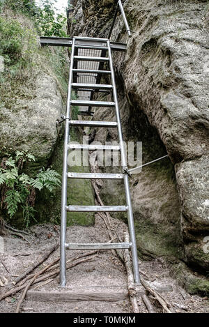 Metal ladder in mountains via ferrata. The steel cable with steel bolt anchors - Stock Image