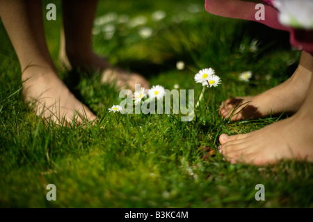 Six year old boy stands barefoot amongst daisies in lawn with his five year old sister - Stock Image