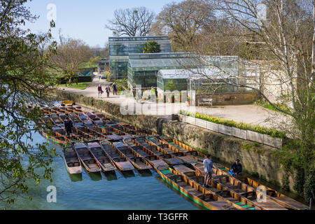 Oxford Botanic Gardens in early Spring with traditional punts on the River Cherwell - Stock Image