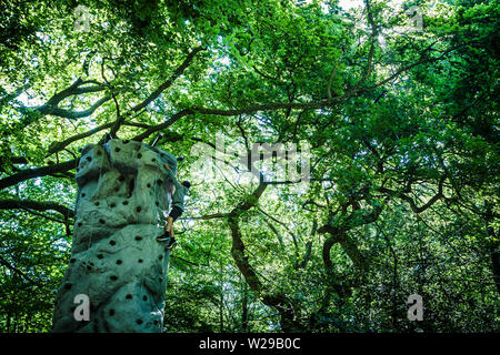 90th Kent County Show, Detling, 6th July 2019. A boy climbs a climbing tower in woodland. - Stock Image